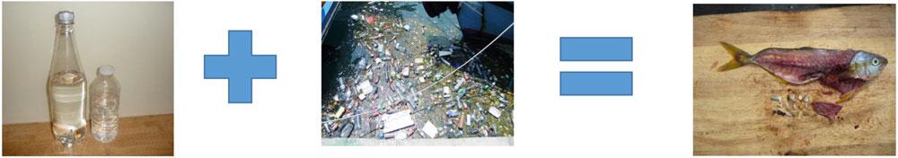 Recycling Bins...USE THEM!