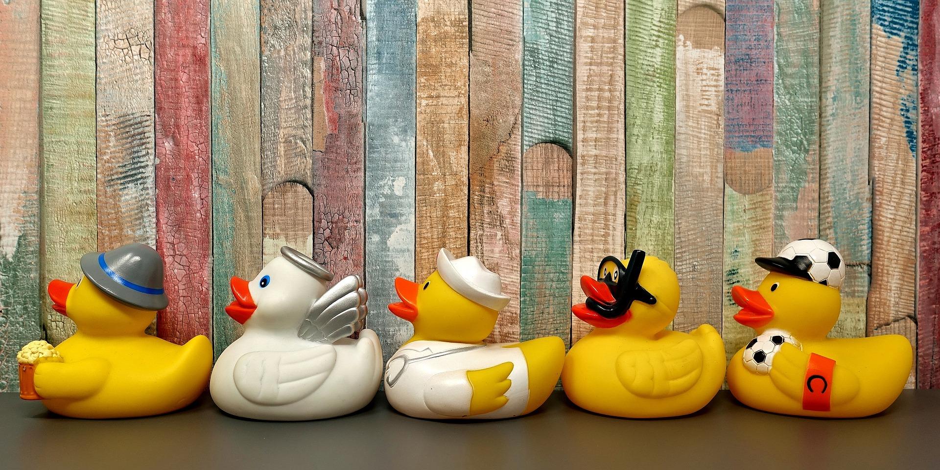 2rubber-ducks-3412065_1920
