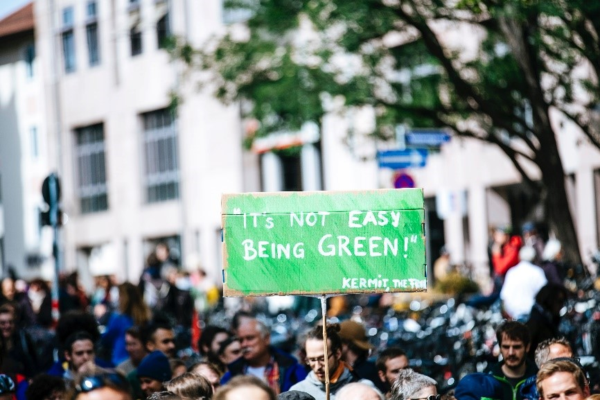 GreenSeas blog 3